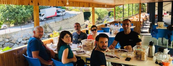 Hacıoglu Çağ Kebap is one of Lieux sauvegardés par Aydın.
