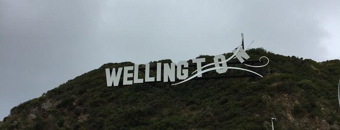 Wellington Blown Away is one of Wellington.