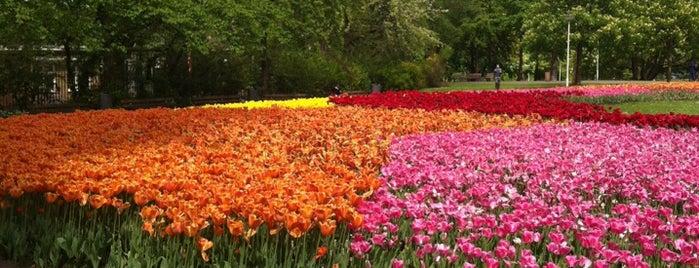 Het Park is one of The Nederlands.
