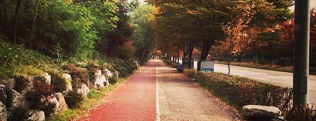 난지천공원 is one of Posti che sono piaciuti a dearest.