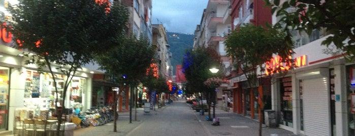 Yeni Mahalle is one of Altınordu.