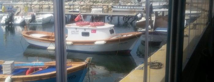 Güzelce Su Ürünleri Balık Restorantı is one of Locais curtidos por Dilara.
