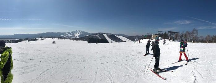 菅平高原 裏太郎ゲレンデ is one of スキー場.