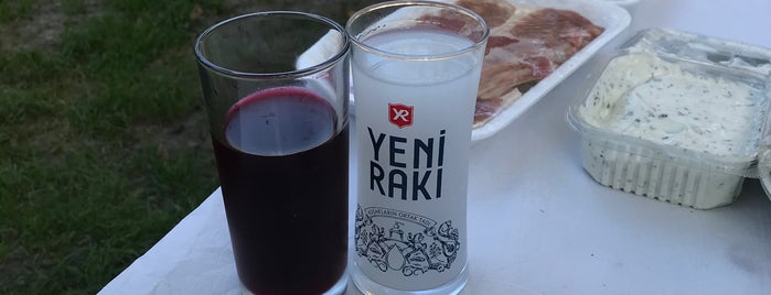 Seckin piknik alani is one of Istanbul Yeme-İçme.