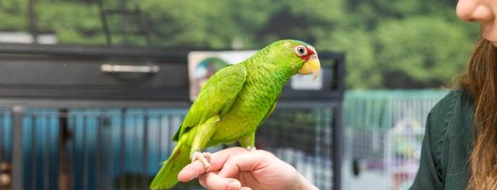 Skyway Feed & Pet Supply is one of Jani 님이 좋아한 장소.