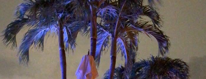 1 Hotel South Beach Rooftop & Lounge Bar is one of Posti che sono piaciuti a Nick.