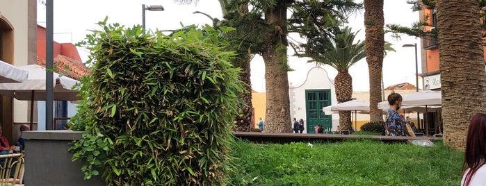 Restaurante El Pescador is one of Tenerife.