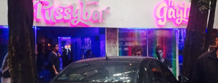The Pussy Bar is one of Go Man Go Gay Mexico City.