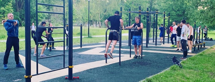 Workout зона. Лефортовский Парк. is one of Extrim.