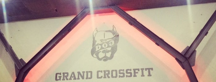 DOG & Grand CrossFit is one of Locais salvos de Ле.