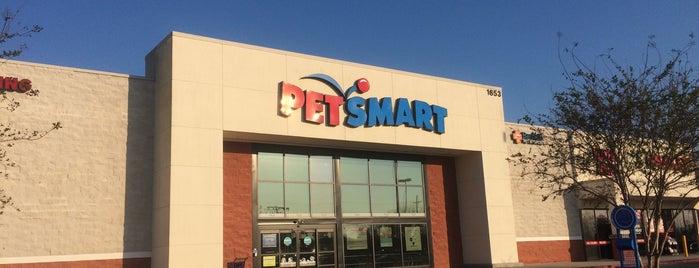 PetSmart is one of Td1.