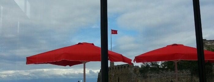 1461 Cafe & Restaurant is one of Harika Yavuz TaSaRiM 님이 좋아한 장소.