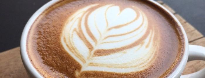 Doppio Cult Cafe and Specialty Coffee Roasters is one of Posti che sono piaciuti a Silvia.