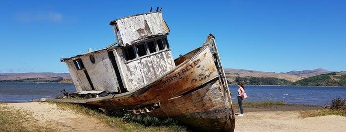 Point Reyes Shipwreck is one of San Fran (Nat & Ryan Wedding).