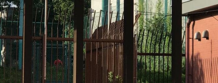 東京都立桜修館中等教育学校 is one of Lieux sauvegardés par Hide.