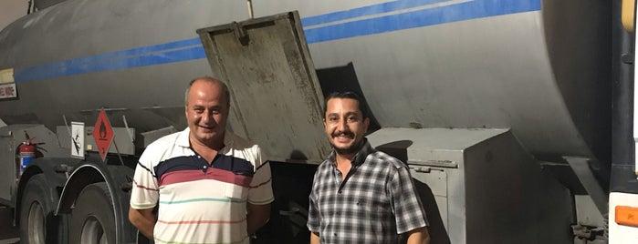 Lieux qui ont plu à Mahmut
