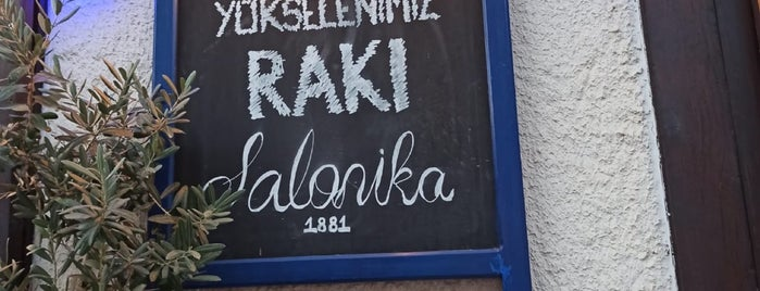 Salonika 1881 is one of Kalkan.