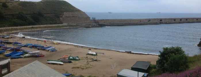 Tynemouth Sailing Club is one of Carlさんのお気に入りスポット.