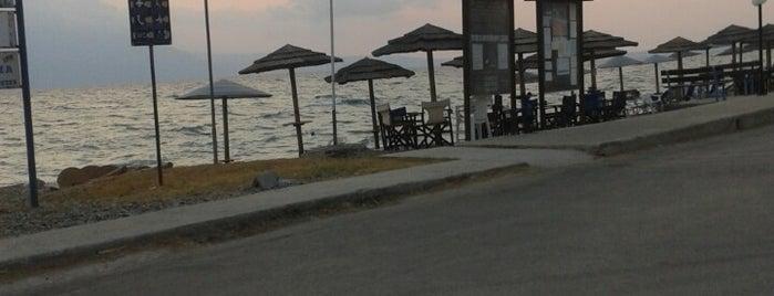 Νεράντζα is one of สถานที่ที่ maria ถูกใจ.