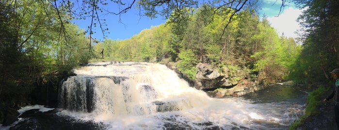 Shohola Falls is one of Delaware River Adventure Ideas.