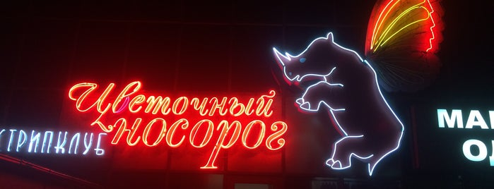 Цветочный носорог is one of strip clubs 3 XXX.