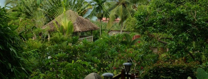 Vivanta by Taj - Green Cove,Kovalam is one of Kerala India.