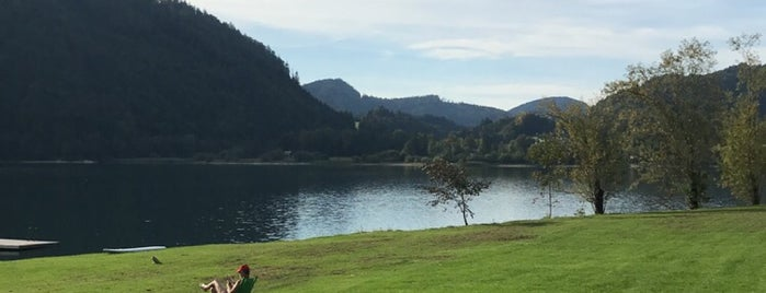 Hintersee is one of das schwimmwasser.