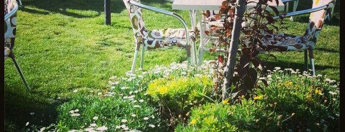 Nobel Garden is one of <3.