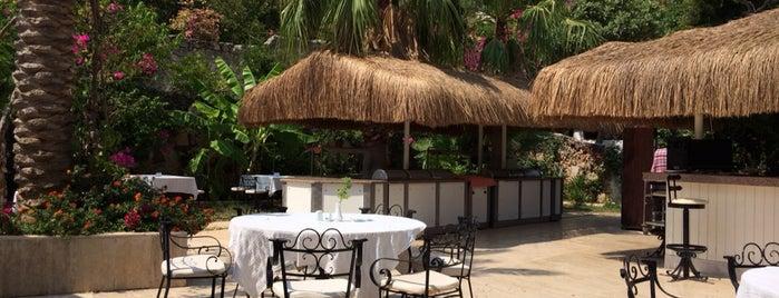 Paradise Garden Butik Hotel is one of Orhan: сохраненные места.