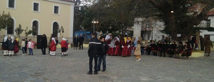 Πλατεία Αιδηψού is one of Lugares favoritos de maria.