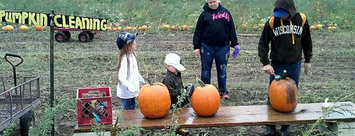 Tom's Pumpkin Farm is one of johnさんのお気に入りスポット.