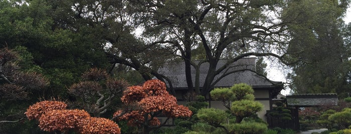 Hayward Japanese Gardens is one of Bay Area places to try out.