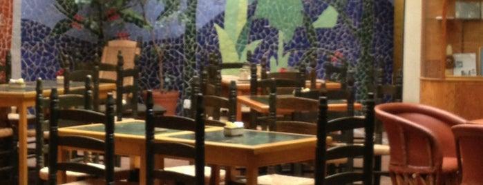 La Selva Café is one of Cafés.