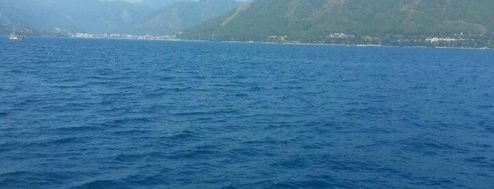 White Whale is one of Lugares guardados de Özlem.