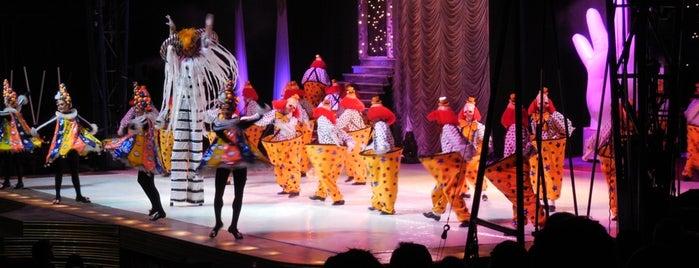 Circo Tihany Spectacular is one of Locais curtidos por Phillipe.