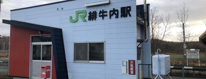 Hiushinai Station is one of JR 홋카이도역 (JR 北海道地方の駅).