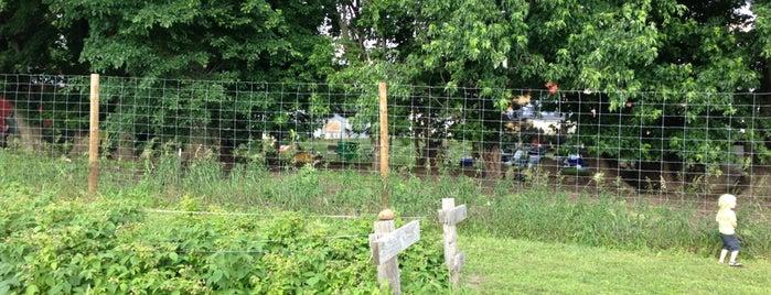 Littlefoot Farm is one of Andrew 님이 좋아한 장소.