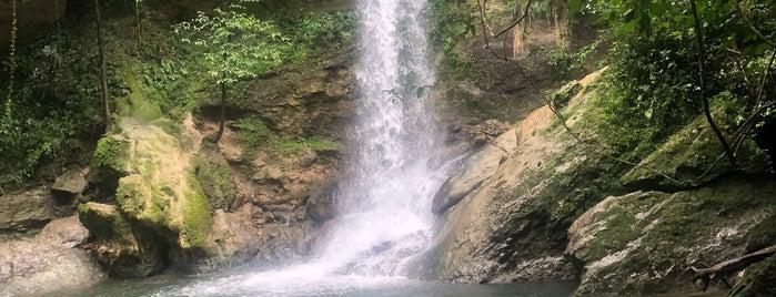 Gozalandia (Secret Waterfalls) is one of Greg : понравившиеся места.