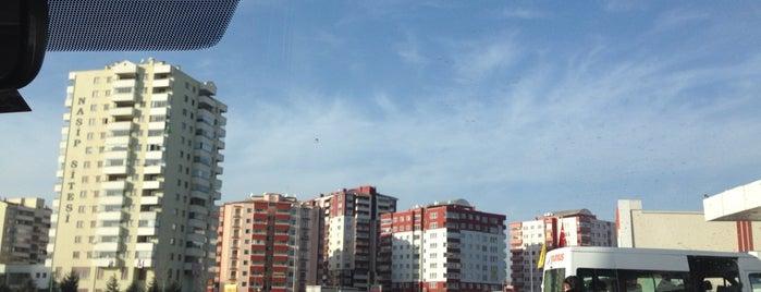 Turgut Özal Mahallesi is one of Tempat yang Disukai Fatih.