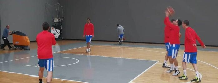 Mustafa V. Koç Spor Salonu is one of Şuleさんのお気に入りスポット.