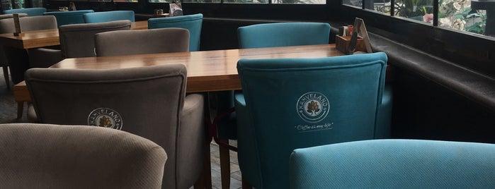 Kahveland Cafe & Restaurant is one of Lugares favoritos de Serdar Gultekin.