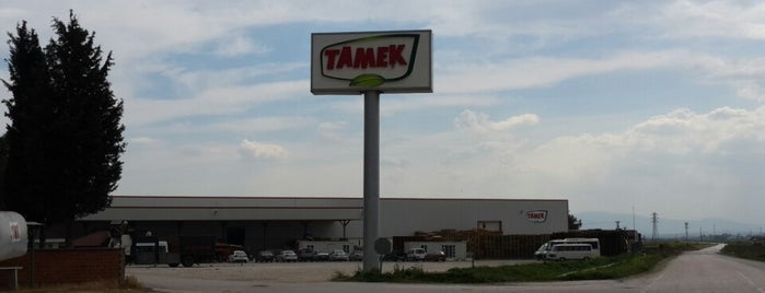 Tamek is one of Kadir❗ : понравившиеся места.