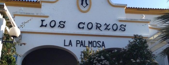 Los Corzos is one of Posti che sono piaciuti a Miranda.