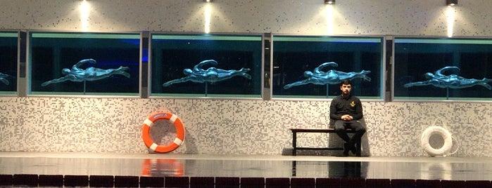 The Club PB Swimming Pool is one of Rasim'in Beğendiği Mekanlar.