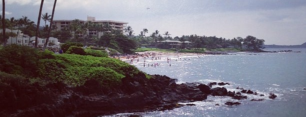 Wailea Beach is one of Lugares favoritos de Amanda.