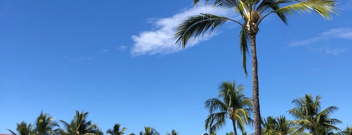 Coconut Grove Marketplace is one of Enjoy the Big Island like a local.
