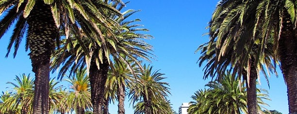 St Kilda Botanical Gardens is one of Melbourne.