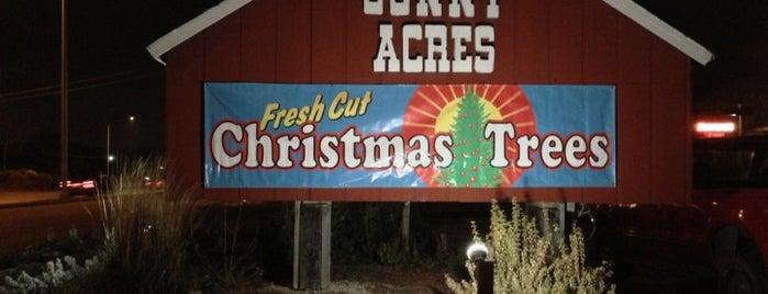 Sonny Acres Farm is one of Orte, die nemo gefallen.