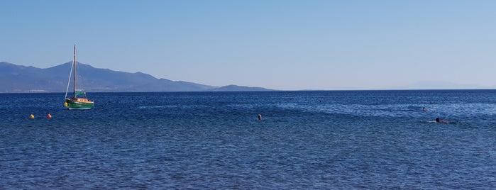 Sarıgül Beach is one of Ato'nun Beğendiği Mekanlar.