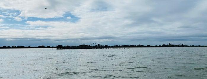 Playa Tamiahua is one of Lugares favoritos de Andras.
